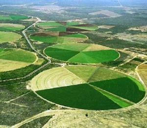 A região é um dos maiores pólos agrícolas de todo o país